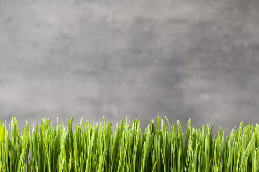 Types artificial turf - 0002