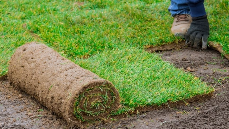 Synthetic grass installation – Benefits and disadvantages